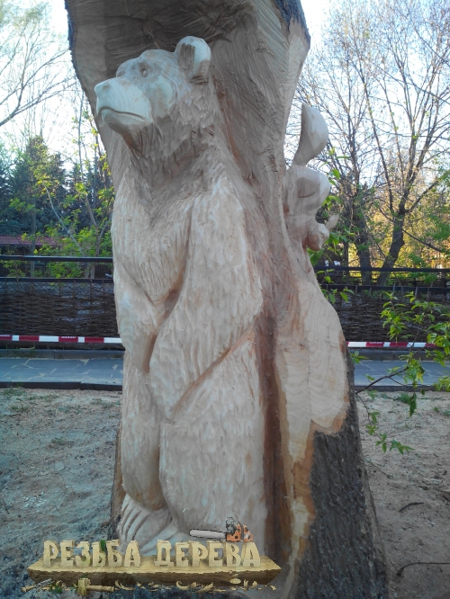 Деревянная скульптура в стволе дерева в Пензенском зоопарке
