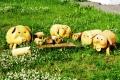 деревянные фигурки домашних животных | Садовая деревянная скульптура