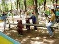 Качели для детей | Детские городки