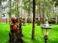 деревянные фигурки животных и птиц | Садовая деревянная скульптура