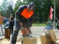 Усердие и труд любое бревно в опилки перетрут | Резьба бензопилой - фестивали, запиловки