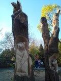 Композиция из дерева на корню в Пензенском зоопарке | Скульптуры в Пензенском зоопарке