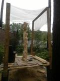 Процесс превращения обрубка дерева в изящную скульптуру | Скульптура на корню