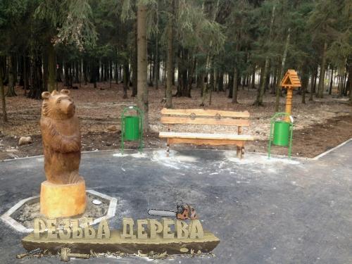 Мишка в Крюковском лесопарке