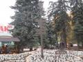 Народный парк Площадь Беларуси. | Народный парк «Площадь Беларуси»