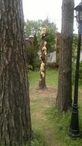 Резьба на корню дерева | Скульптура на корню