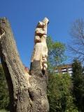 Резные скульптуры в Пензенском зоопарке | Скульптуры в Пензенском зоопарке