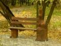 Скамеечка из дерева в Измайловском парке | Измайловский парк