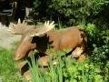 Лось отдыхает в парке Лосиный Остров | Парк «Лосиный остров»