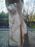 Деревянная скульптура в стволе дерева в Пензенском зоопарке | Скульптуры в Пензенском зоопарке