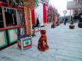 Деревянная собака. | Фестивальная площадка на Святоозерской улице. Москва, Косино-Ухтомское.